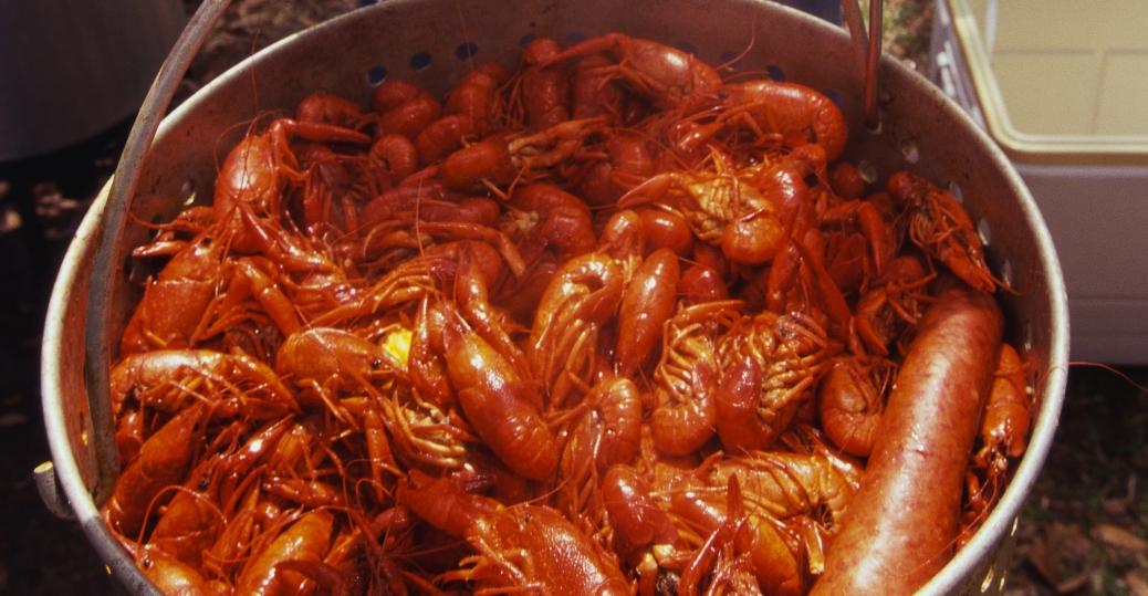 crawfish, crustaceans, louisiana, kettle, boiled, seafood