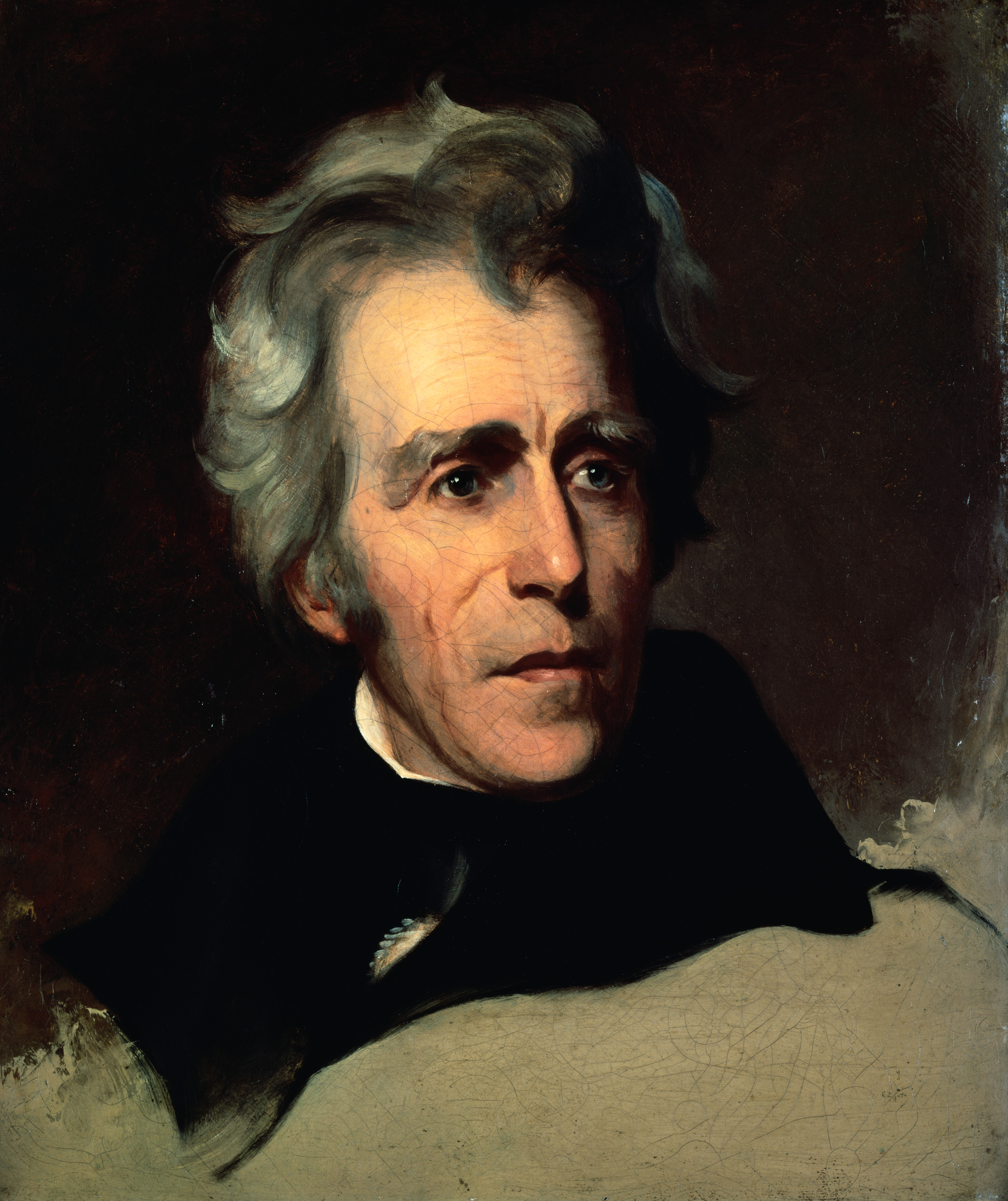 essays on andrew jacksons presidency Suggested essay topics and study questions for 's andrew jackson perfect for students who have to write andrew jackson essays.