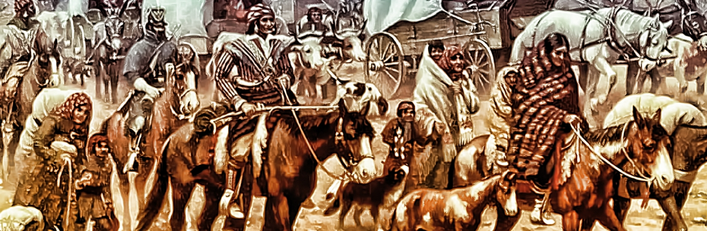the presidency of andrew jackson and the history of the trail of tears Find out more about the history of trail of tears, including  trail of tears find out how andrew jackson's controversial indian removal act paved the way for the.