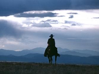 cowboys facts summary history com
