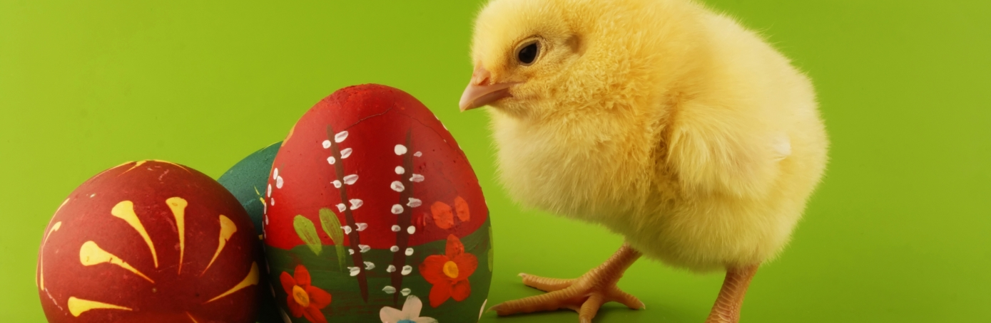 Easter Symbols and Traditions - Holidays - HISTORY.com