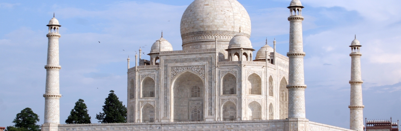 What does the taj mahal look like