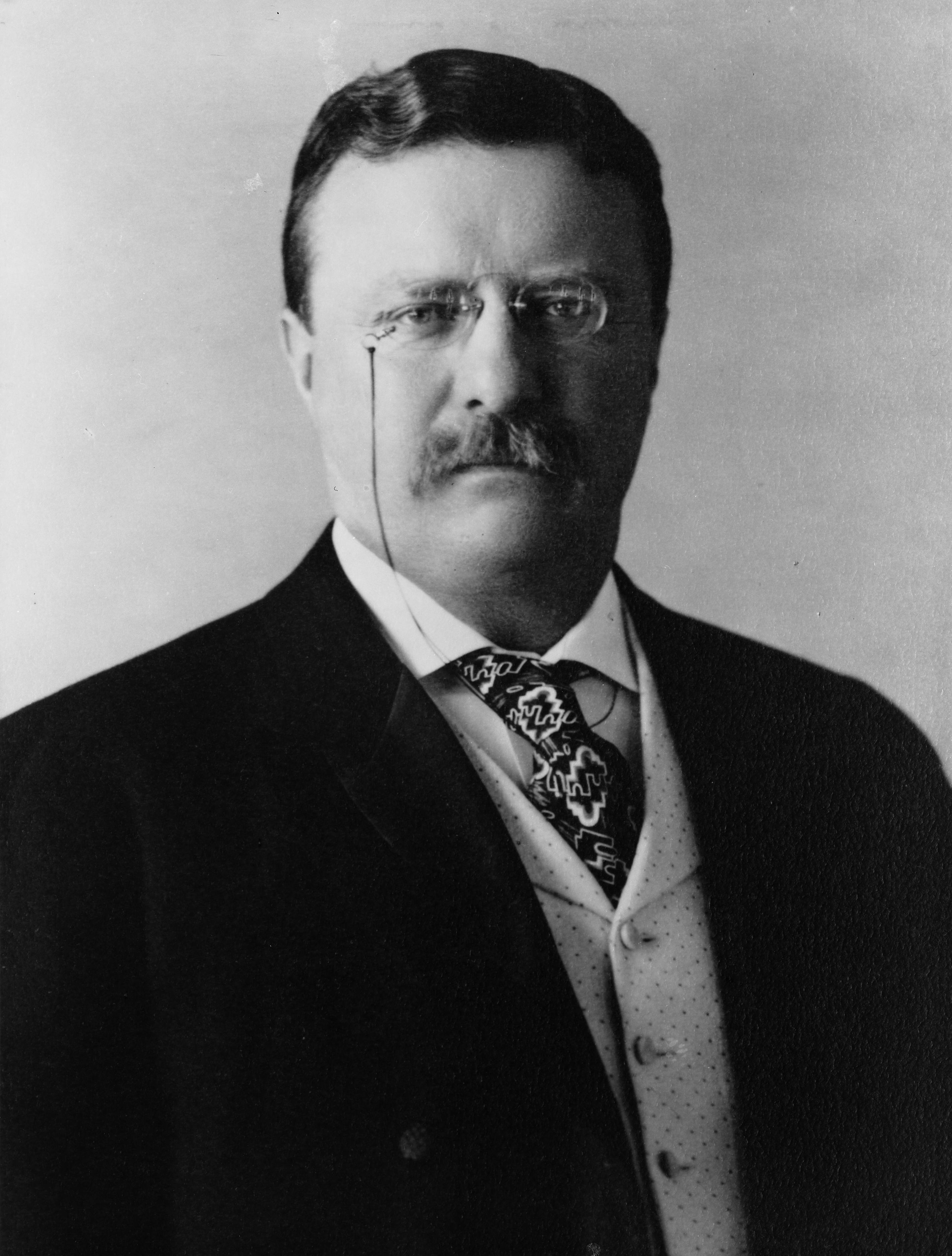 Theodore Roosevelt Vice President