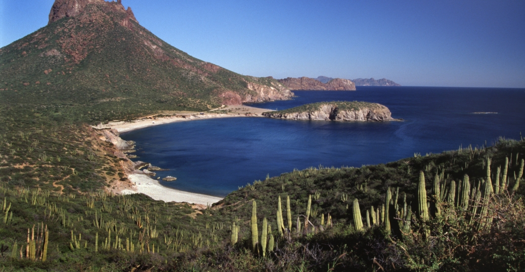 piedras pintas beach, gulf of california, mexico, sonora