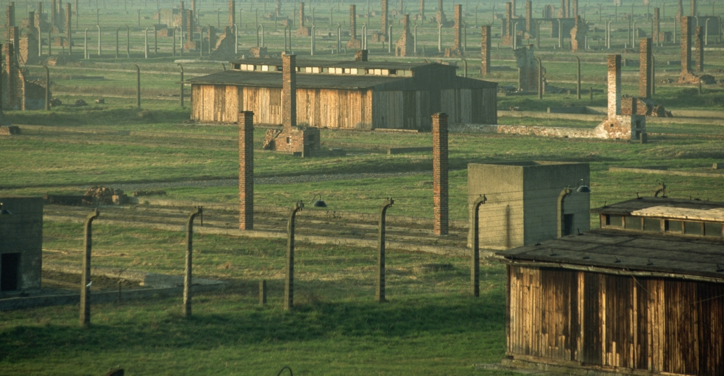 auschwitz, auschwitz-birkenau, death camp, gas chambers, nazi, the holocaust, concentration camps, extermination camp, world war II, buildings, chimneys, fences