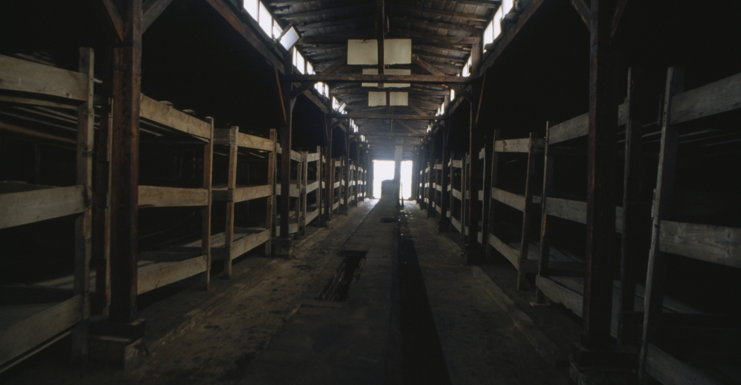 auschwitz, auschwitz-birkenau, nazi, the holocaust, concentration camps, extermination camp, world war II, dormitory houses, poland