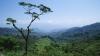 hills, chamula, mexico, chiapas