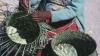 tarahumaran, basket weaving, mexico, chihuahua
