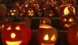 carved pumpkins and jack o'lanterns