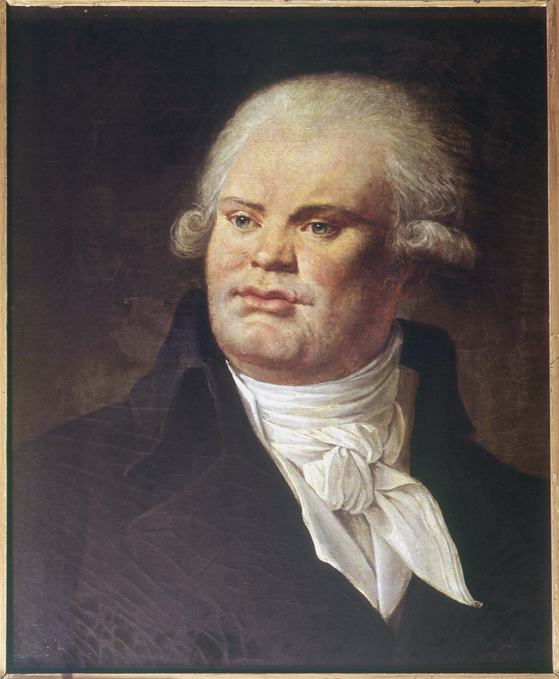 georges-jacques-danton - French Revolution Pictures - French Revolution - HISTORY.com