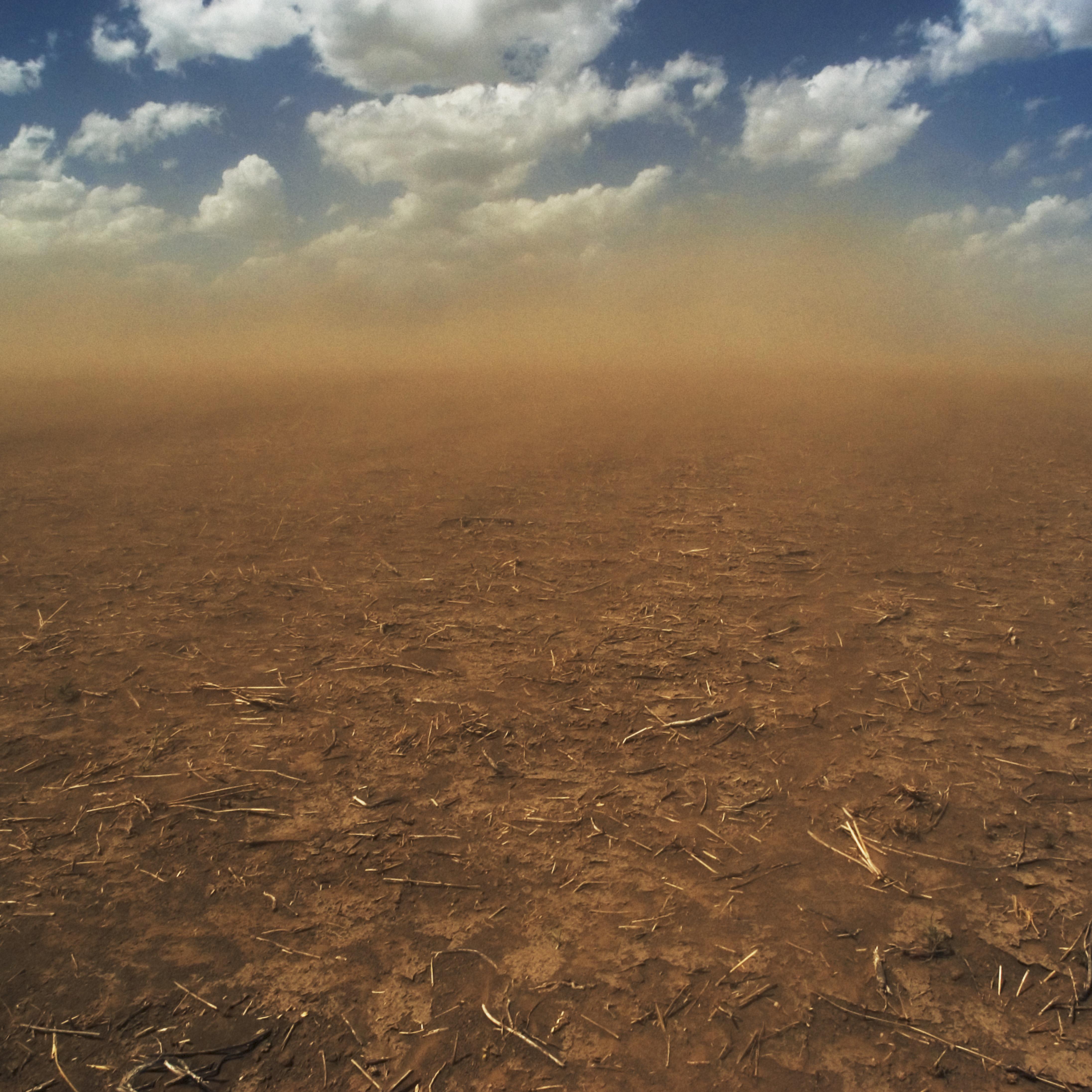 [Image: dust-storm-roars-across-field.jpg]