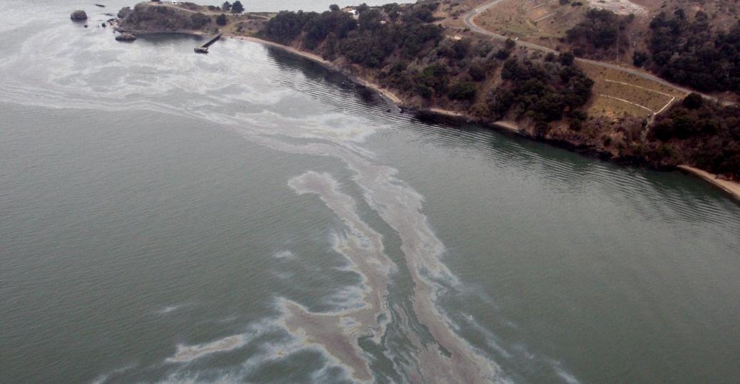 2007, cosco busan, san francisco, san francisco bay, oil spill