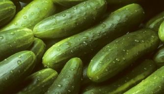 Perilous Produce