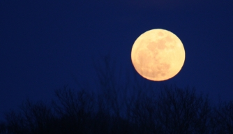 7 Unusual Myths and Theories About the Moon