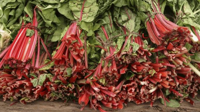 HUNGRy Rhubarb: A Love Affair