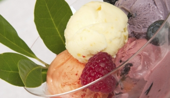 Snow in Summer: A Global History of Frozen Treats
