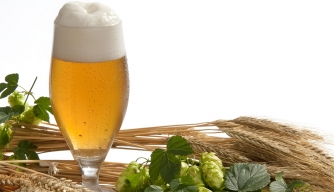 The Hoppy History of Beer