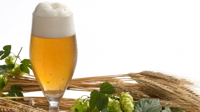 HUNGRY The Hoppy History of Beer