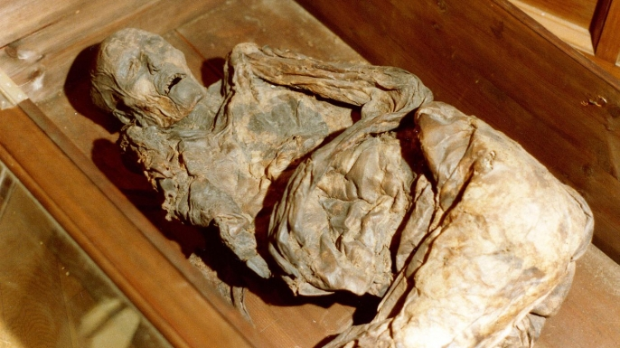 Body of Huldremose Woman