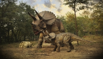 Cold-Blooded or Warm-Blooded? Dinosaurs May Have Been in Between