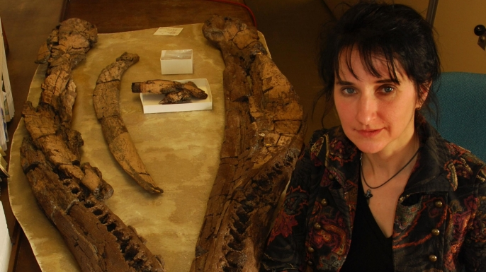 Scientist Judyth Sassoon with a pliosaur skull that shows signs of arthritis.