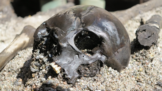 Pierced skull front of one of the bodies discovered near Alken Enge