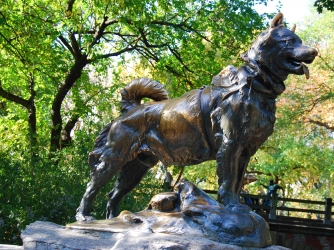 Statue of Balto in New York's Central Park (Credit: Getty Images)