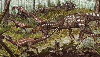 Artist's rendering of Tachiraptor admirabilis on the attack