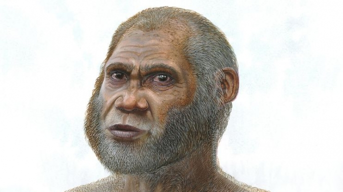 An artist's reconstruction of what the Red Deer Cave people, a possible new species discovered in China, might have looked like.