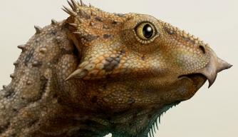 Paleontologists Identify North America's Oldest Horned Dinosaur