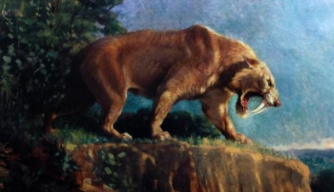 Powerful Arms Saved Saber-Toothed Killers' Fearsome Fangs, Study Shows