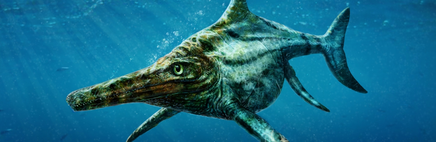 Artist's rendering of the new species of ichthyosaur, Dearcmhara shawcrossi