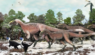 An artist's impression of the newly discovered dinosaur Yutyrannus huali.