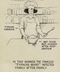 Poster warning of the dangers of food contamination. (Credit: Otis Historical Archives/National Museum of Health & Medicine)