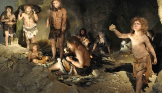 Neanderthals Likely Lived in Small, Isolated Groups, Scientists Say