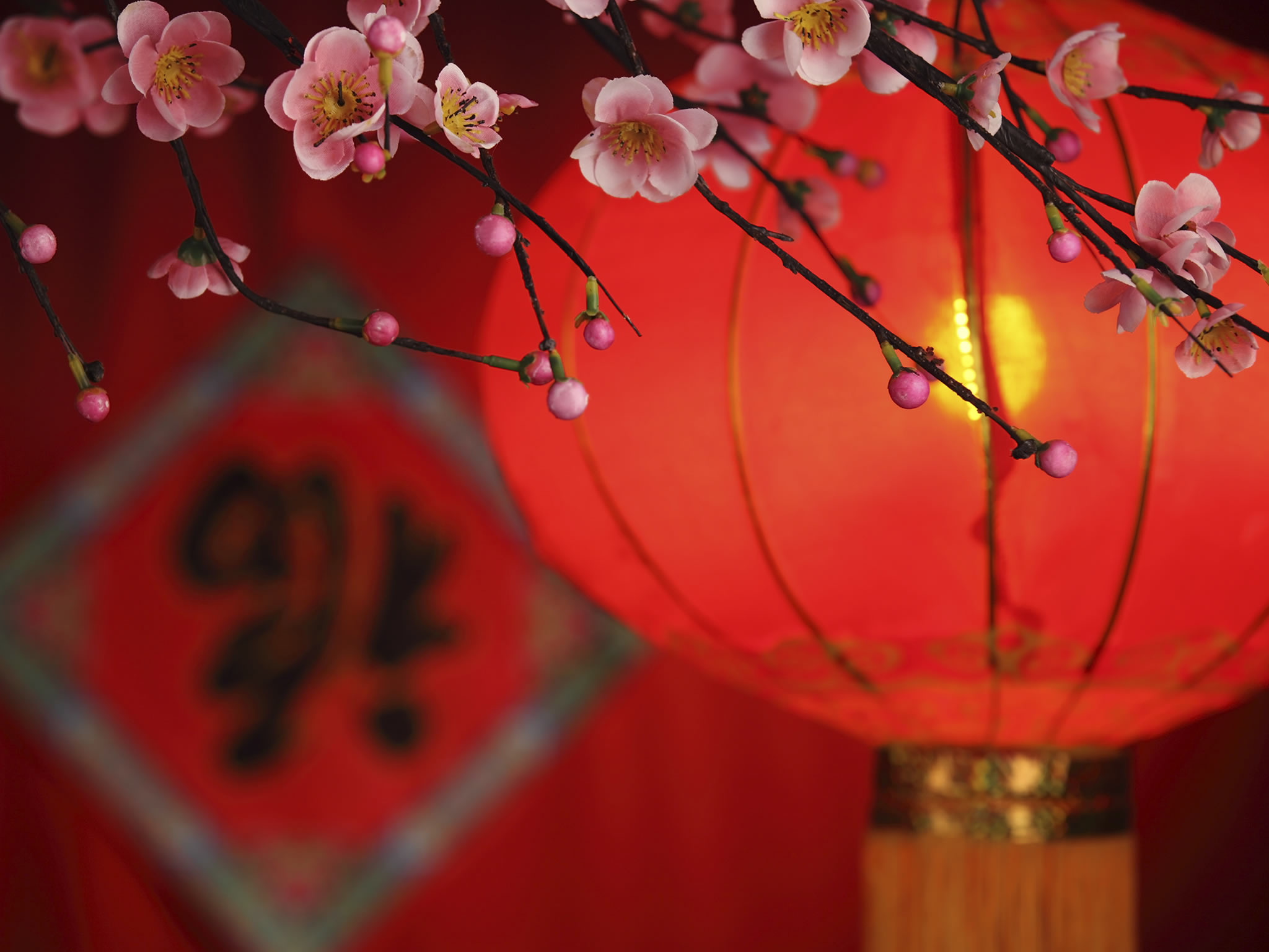 8 things you should know about chinese new year history in the