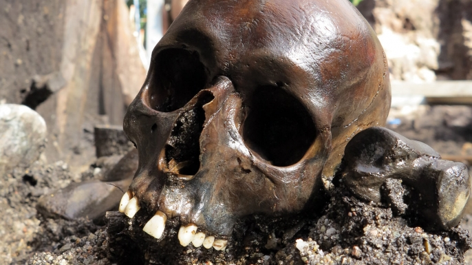 Among the remains found at an archeological site in what is now Aiken, Denmark, is a skull from early Roman Empire.