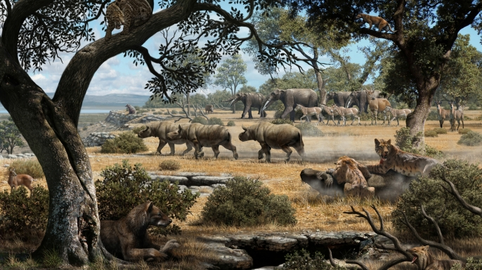 Reconstruction of central Spain's Cerro de los Batallones region 9 million years ago, when saber-toothed cats and bear dogs ruled the food chain.
