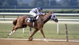 Secretariat and jockey Ron Turcotte near victory during the Belmont Stakes on June 9, 1973.