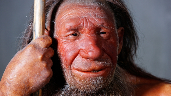 Model of a Neanderthal man, Neanderthal Museum, Mettmann, Germany
