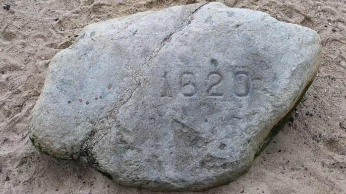 hith plymouth rock