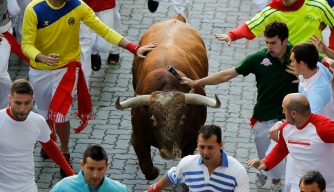 Day 2 of the 2013 Fiesta de San Fermin.