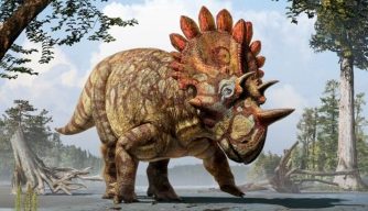 "New ""Hellboy"" Dinosaur Identified in Canada"
