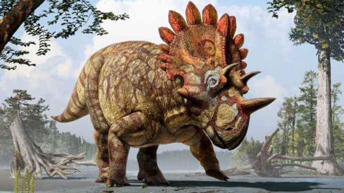 Artist's representation of the newly discovered Regaliceratops peterhewsi.
