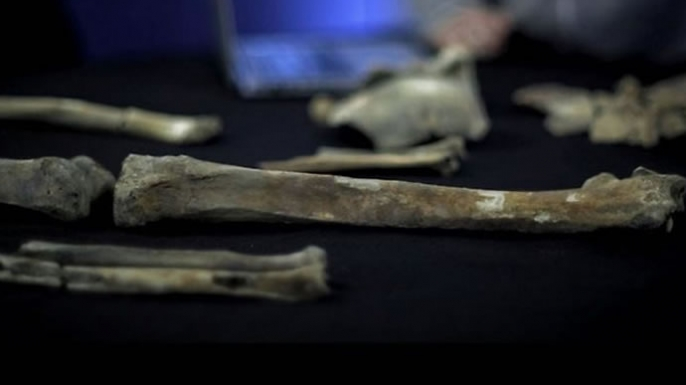 Fragments of pelvic bones believed to be part of the skeleton of Alfred the Great or his son, Edward the Elder.
