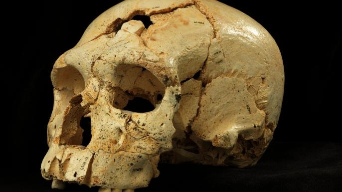 oldest murder victim