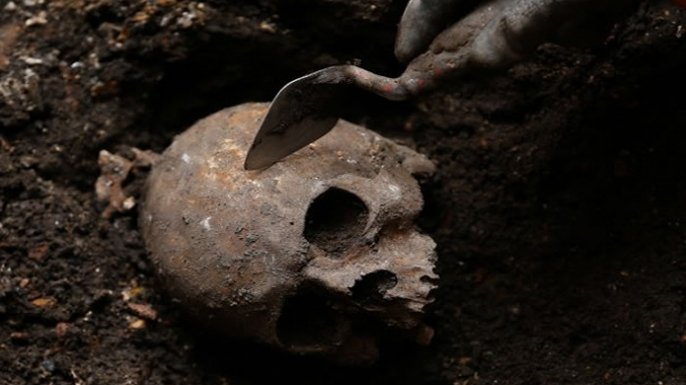 A skull excavated from a site near London's Liverpool Station in August 2013.