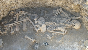 Iron Age Graves in Britain Yield Hybrid Animals and Human Sacrifice