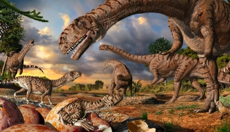 Oldest Known Dinosaur Nesting Site Was Also a Nursery