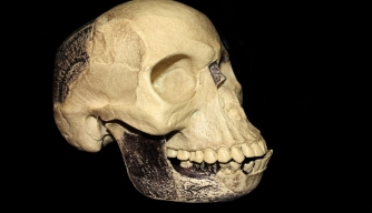 Piltdown Man Hoax, 100 Years Ago